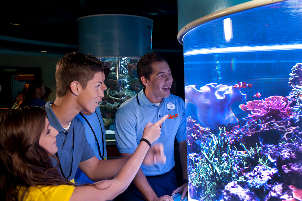 Chart a course to explore career opportunities in Marine Science. Your excursion will take you behind the scenes to uncover success factors and challenges of working in this fascinating field.